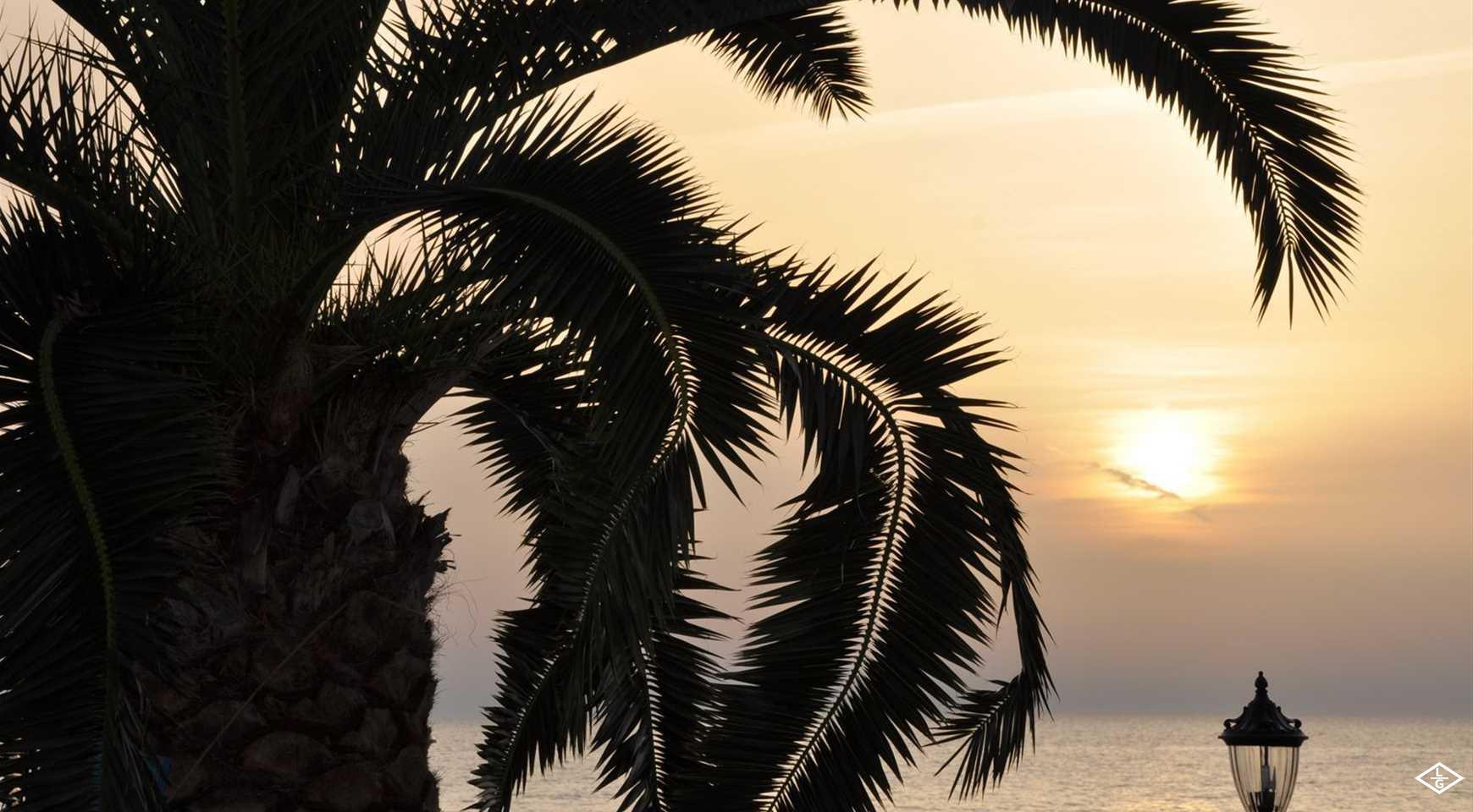 Отели Сочи  категории «3 звезды» на берегу Черного моря